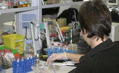 Hospitales públicos ensayan nuevos fármacos contra la hepatitis C